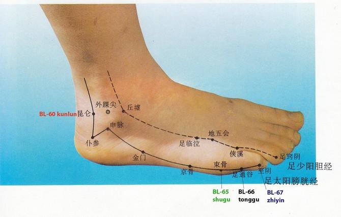 Preferenza Shu antichi del piede e caviglia HI41